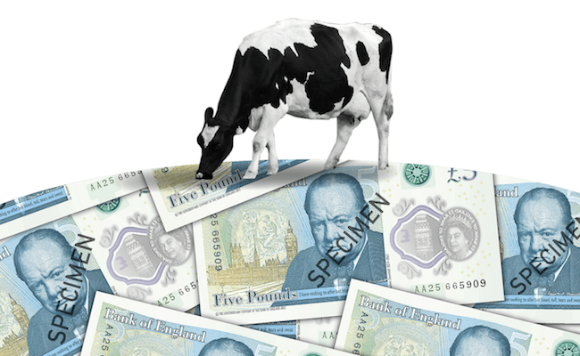 polymer bank note not vegan 2 2 - Will next year's new £10 note be vegan?